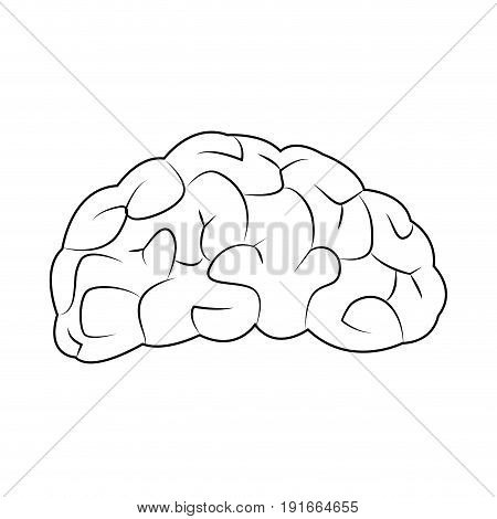human brain for medical healty design vector illustration