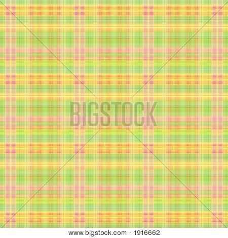 Summer Plaid  Illustrated Background