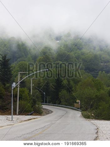 Empty Foggy Straight Redwood Highway and clouds
