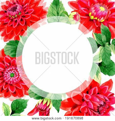 Wildflower dahlia flower frame in a watercolor style isolated. Full name of the plant: red dahlia. Aquarelle wild flower for background, texture, wrapper pattern, frame or border.