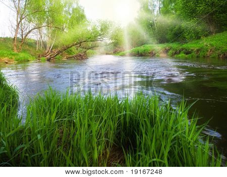 Dreamy summer river.