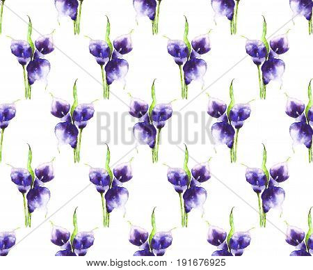 Bouquet of purple Calla lilies watercolor. Hand-drawn violet flowers on white background. Seamless pattern for Wallpaper, design, decor, clothing, dresses, textiles, paper, greeting cards