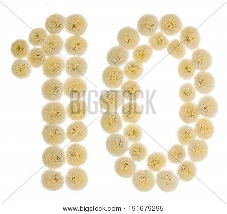 Arabic Numeral 10, Ten, From Cream Flowers Of Chrysanthemum, Isolated On White Background