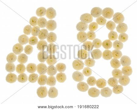Arabic Numeral 48, Forty Eight, From Cream Flowers Of Chrysanthemum, Isolated On White Background