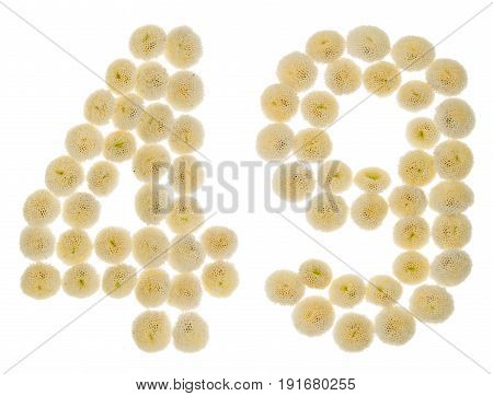 Arabic Numeral 49, Forty Nine, From Cream Flowers Of Chrysanthemum, Isolated On White Background