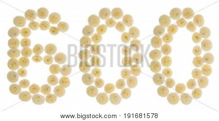Arabic Numeral 600, Six Hundred, From Cream Flowers Of Chrysanthemum, Isolated On White Background