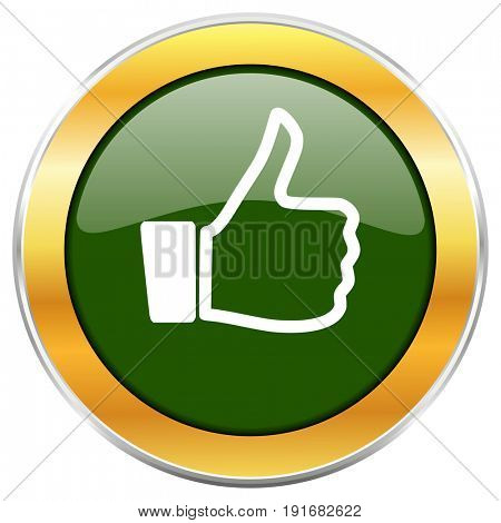 Like green glossy round icon with golden chrome metallic border isolated on white background for web and mobile apps designers.