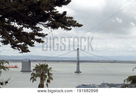 View of Bay Bridge from Coit Tower through the trees. San Francisco, California.
