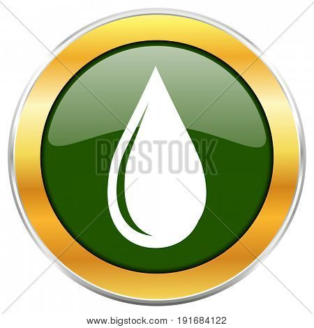 Water drop green glossy round icon with golden chrome metallic border isolated on white background for web and mobile apps designers.