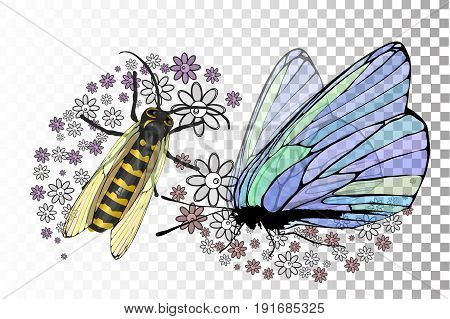 Butterfly And A Bee With Transparent Wings