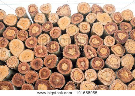 Closeup of a pile cut timber wallpaper