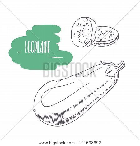 Hand drawn eggplant isolated on white. Sketch style vegetables with slices for market, kitchen or food package design. Vector illustration