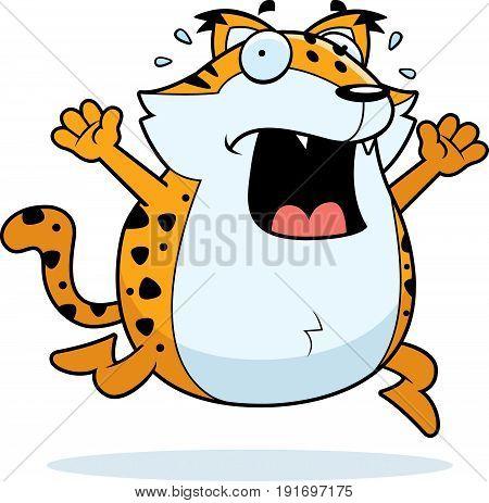 Cartoon Bobcat Panic