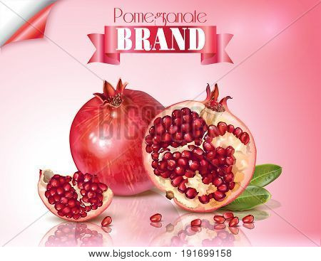 Vector banner of pomegranate fruits group with ribbon on pink background. Design for cosmetics, spa, pomegranate juice, health care products, perfume. Can be used as packaging design