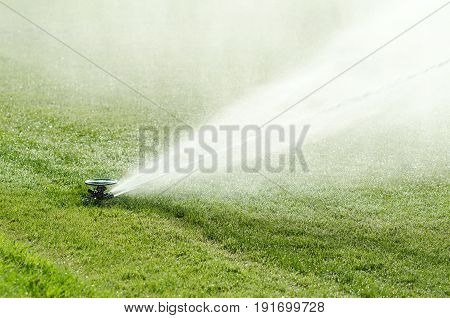 Impact sprinkler on lawn in action. Impulse sprinkler head with out streaming water fountain on artificial green lawn in full sunlight. Long spray radius creates the effect of natural rainfall. Photo.