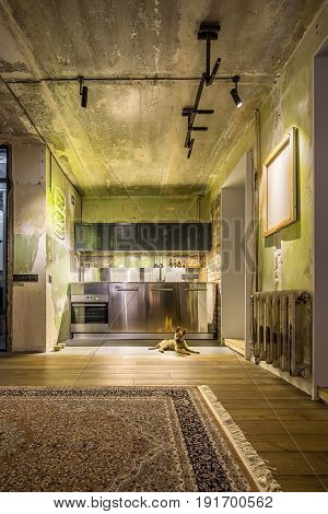 Loft style kitchen with shabby and brick walls. There is oven, chrome lockers, reticulated shelves, luminous yellow signboard and lamps, canvas, horizontal bar, carpet, puppy on the floor.