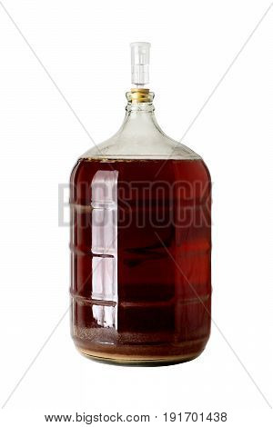 Five Gallon Carboy of Fermenting Homebrew Beer