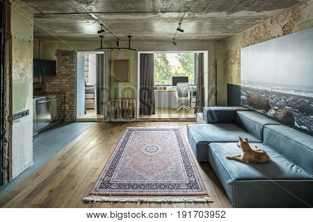 Interior in a loft style with shabby and brick walls and a parquet with a carpet on the floor. There are sofas with lying dog, table with computer and chair, curtains, lamps, pictures, kitchen zone.