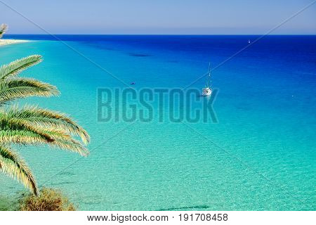 Aerial view on a white boat in the Atlantic ocean and green palm tree leaves on the Canary Island Fuerteventura Spain.