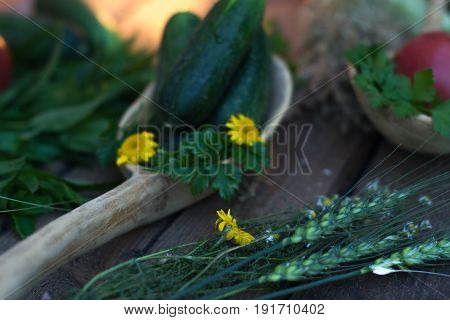 Fresh cucumber from the garden on a wooden background