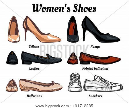 Womens shoes types classification set. Oxfords loafers simple and pointed ballerinas pumps stilettos.