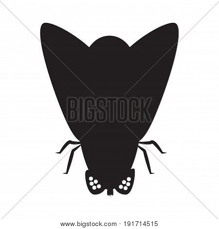Silhouette of a fly. Insect, gnat. Vector illustration. On a white background