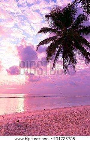 Sunrise Divine Idyllic Wallpaper