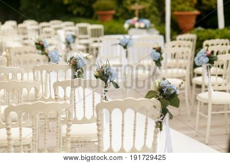 A Look From Behind On White Chairs Decorated With Blue Hydrangeas