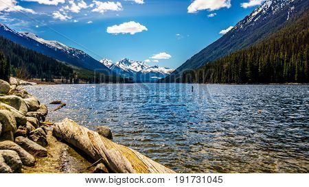 Logs on the shore of Duffey Lake in the Coast Mountain Range between Pemberton and Lillooet in southern British Columbia. The snow capped peak of Mount Rohr at the far south end of the lake