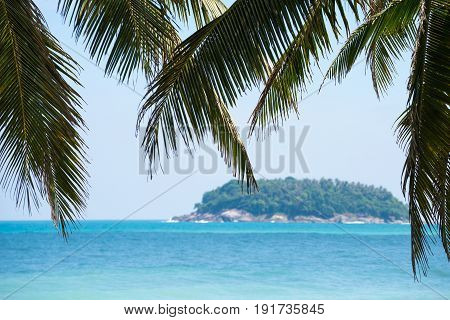 Tropical beach background at daytime with coconut palm tree in foreground and blurry sea and island background.