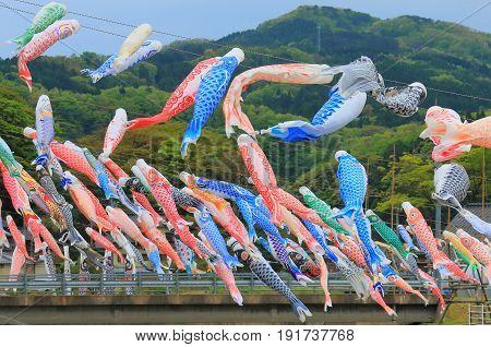 Koinobori in Ishikawa Japan. Koinobori is carp shaped wind socks traditionally flown in Japan to celebrate Tango no sekku children's day.