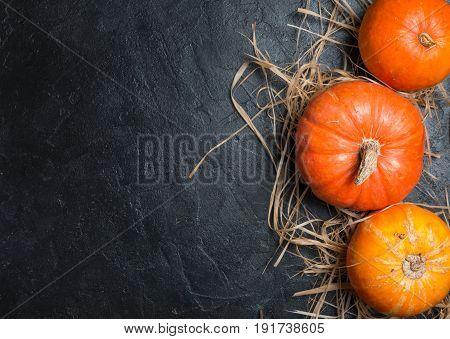 Autumn Pumpkin Thanksgiving Background - orange pumpkins over black table, top view