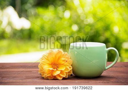 A cup of tea in a sunny garden on a wooden table. A round mug with floral tea and aster on the background of a summer garden. Green blurred background. Copy space