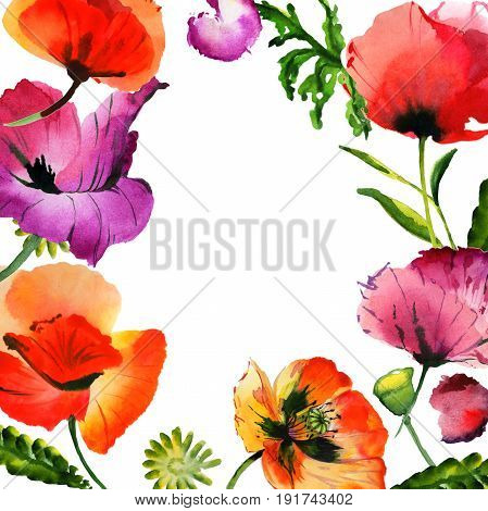 Wildflower poppy flower frame in a watercolor style isolated. Full name of the plant: poppy, papaver,  opium. Aquarelle wild flower for background, texture, wrapper pattern, frame or border.