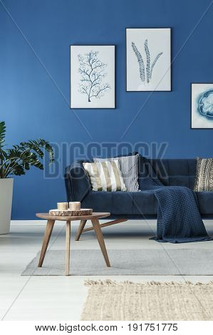 Modern living room with elegant sofa and blue wall
