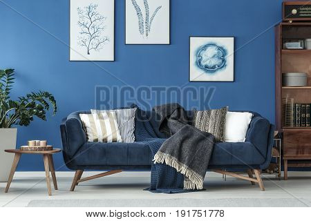 Retro decorated sofa in elegant living room