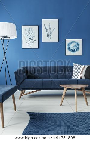 Retro elegant sofa in blue stylish living room