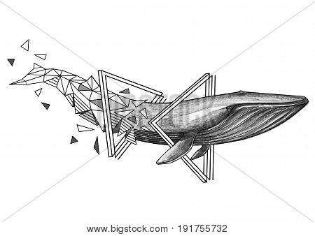 Graphic blue whale swiming through the triangular shapes. Giant sea and ocean creature isolated on white background. Tattoo art