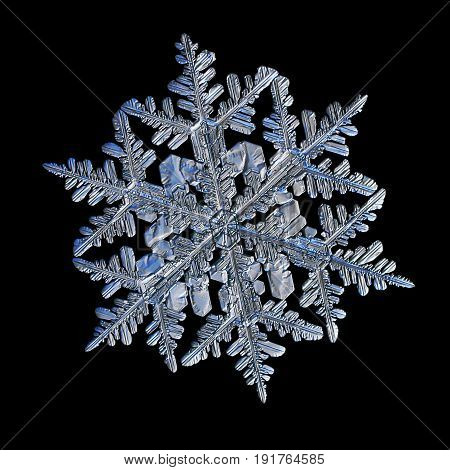 Snowflake isolated on black background. Macro photo of real snowflake: big stellar dendrite snow crystal with glossy relief surface, fine symmetry, six long, elegant arms with lots of side branches.
