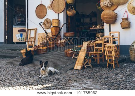 two dogs sitting front of a Chinese bamboo goods shop.