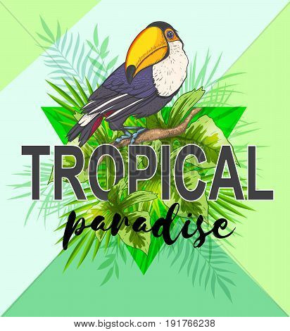 Green triangle with palm leaves and toucan bird. Abstract tropical summer background.