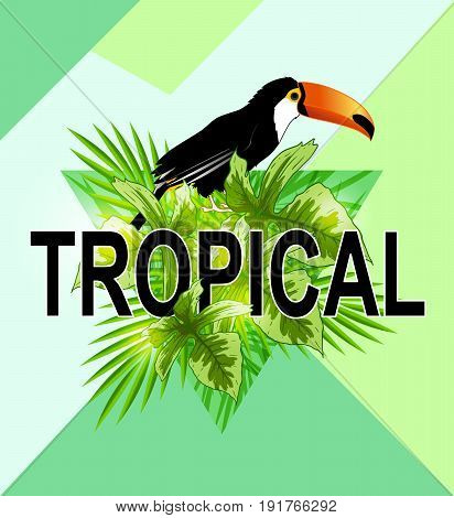 Green triangle with palm leaves and toucan bird. Abstract geometric tropical summer background.