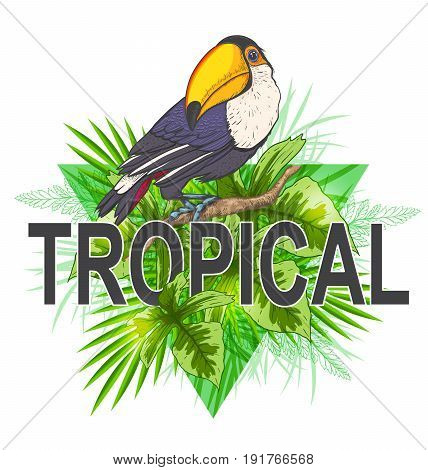 Green triangle with palm leaves and toucan bird on a white background. Tropical summer background.