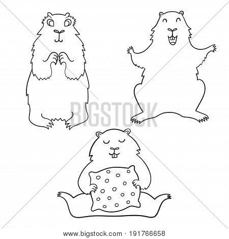 Cheerful cool cartoon groundhog. Groundhog Day. Vector illustration.