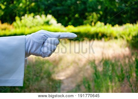 The waiter's hand in a white glove and with a white napkin shows with the fingers a sign forward to the left on a green background of trees and bushes on a blurred background