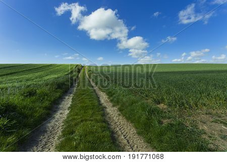 Agricultural Fields And Farm Road On A Sunny Spring Day In Normandy, France. Countryside Landscape.