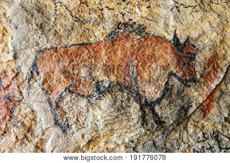 Cave painting in prehistoric style - detail