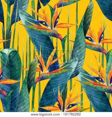 Watercolor strelitzia seamless pattern. Hand painted exotic leaves and flowers