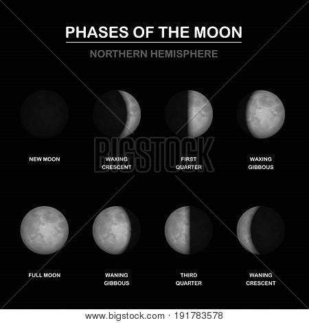 Phases of the moon chart, northern hemisphere, new and full moon, waxing and waning crescent and gibbous, first and third quarter - different shapes of illuminated portions. Vector illustration.