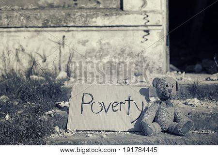 Teddy bear and piece of cardboard with inscription on street. Poverty concept